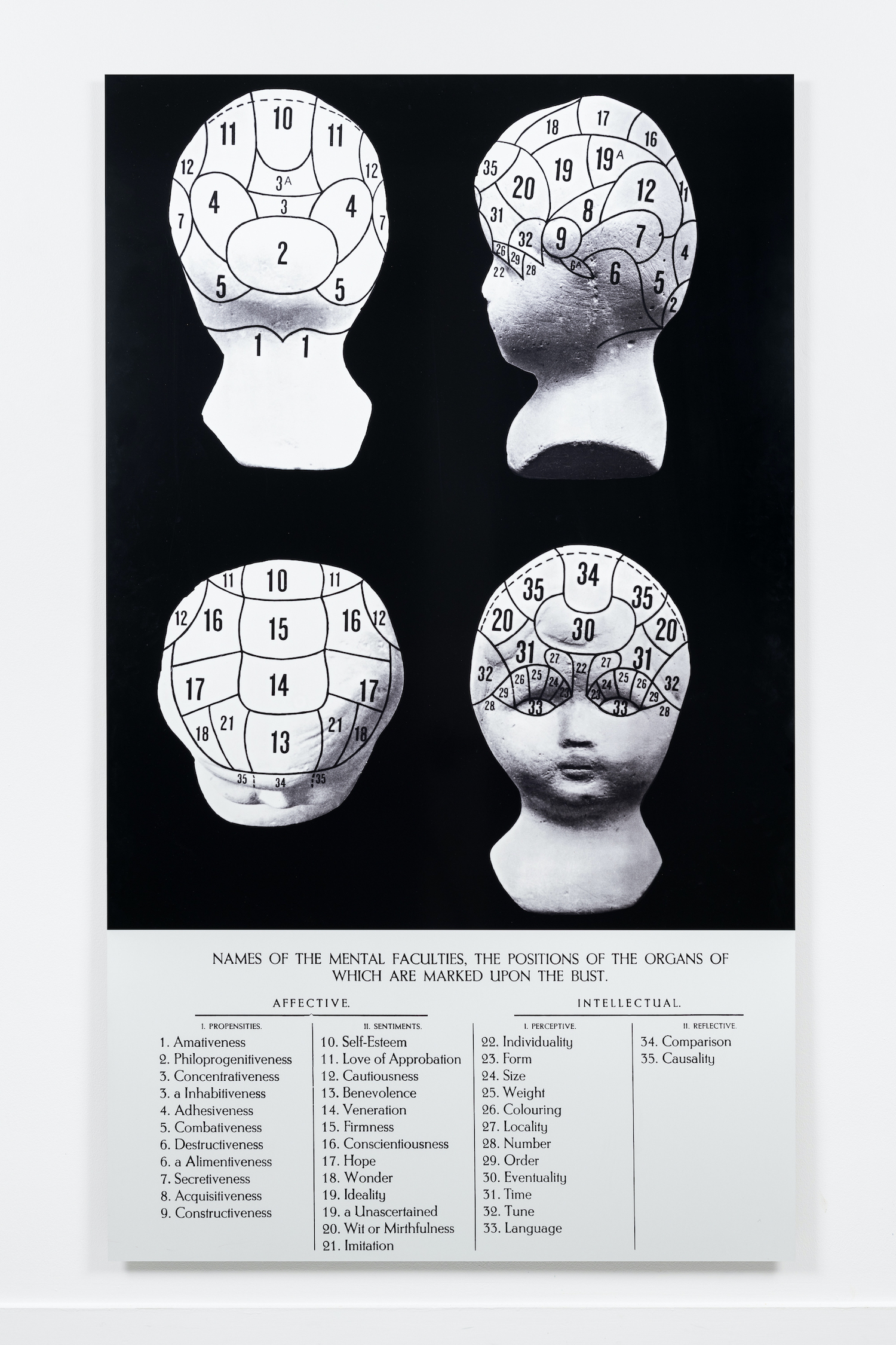Marianne Heske, 15 Phrenology Photo Analysis, 1977-78, aluminum charts indicating 35 human faculties, 215 x 125 cm